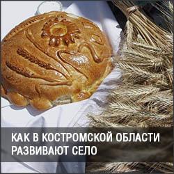 Как в Костромской области развивают село